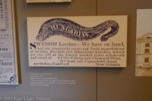 Exhibit at the Cabildo, concerning leeches.